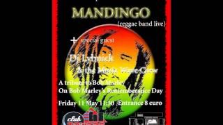 Mandingo Always Love You