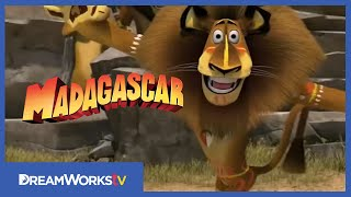 MADAGASCAR: ESCAPE 2 AFRICA | Official Trailer