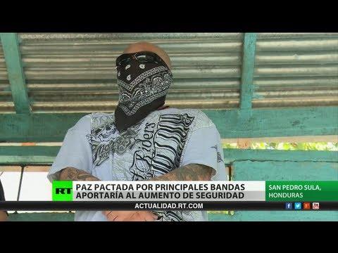 Honduras La Mara Salvatrucha y la Mara 18 acuerdan la cero violencia