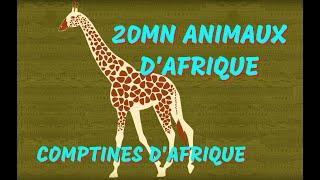Animaux d'Afrique - 20min de Chansons et Comptines pour les petits