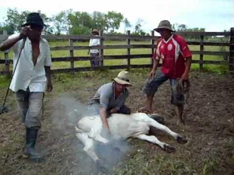 Trabajo de Llano Rondón 1.mp4