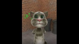funny cats farting funny video download free