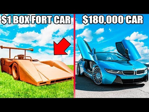 1 BOX FORT CAR Vs 180 000 CAR 📦🚗You Won t Believe Who Won