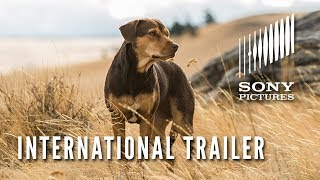 A DOG'S WAY HOME – International Trailer
