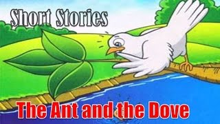 Short Stories - The Ant and the Dove - One good turn deserves another.