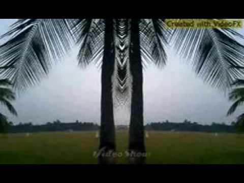 www.banglax.com