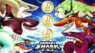 HUNGRY SHARK WORLD ALL FULLY MAXED !! SHARKS