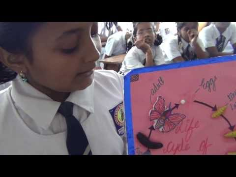 Xxx Mp4 SCIENCE PROJECTS BY CLASS 7 STUDENTS PART 2 3gp Sex