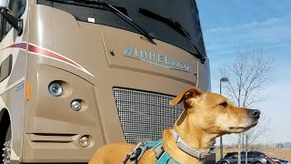 RV Living With Pets (RV Full-Time)