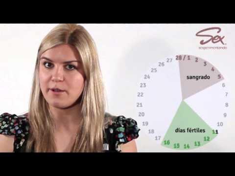 Cómo estimar los días fértiles conoce tu ciclo menstrual