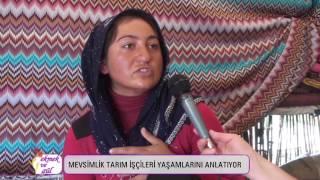 Mevsimlik tarım işçisi kadınlar anlatıyor