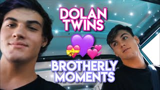 DOLAN TWINS SOFT + BROTHERLY MOMENTS