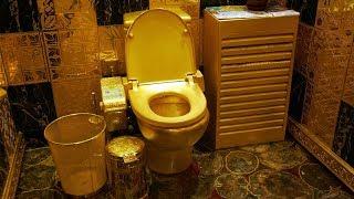 China's Toilet Revolution
