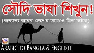 Saudi Arabic Basha with Bangla & English II Arabic to Bangla-English [Bangla Video].