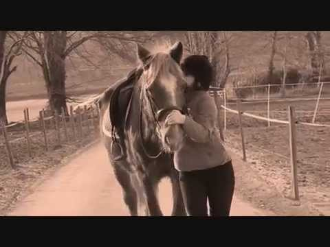 Xxx Mp4 A Girl And Her Horse X 3gp Sex