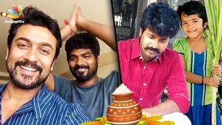 Surya, Vignesh Shivan , Sivakarthikeyan and more Celebs Celebrate Pongal 2018 | Tamil Cinema News