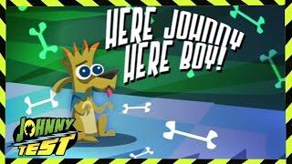 Johnny Test 329: Aqui Johnny, Aqui Garoto // Johnny Purê de Maçã