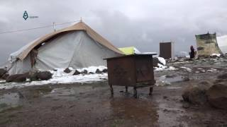 Qunaitra: Displaced people in Amal camp living miserable situation 29-1-2017