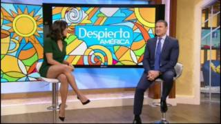 Francisca Lachapel hot legs - Despierta America - 11/14/16