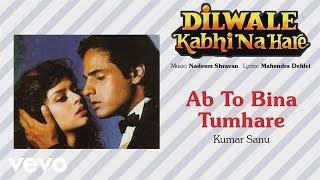 Official Audio Song | Dilwale Kabhi Na Hare | Kumar Sanu |Nadeem Shravan