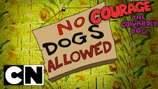 Courage the Cowardly Dog - A Night at the Katz Motel