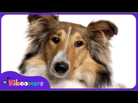 BINGO | Bingo Dog Song | Nursery Rhymes Songs | Kids Songs | The Kiboomers