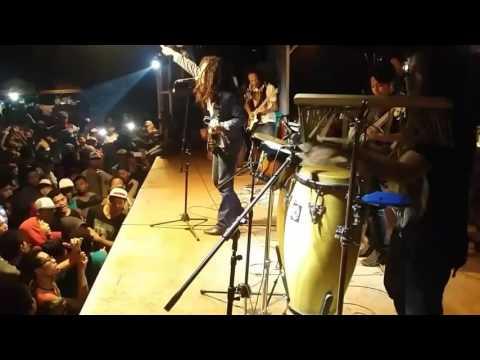 Konser musik reggae ( senopati reggae roots )