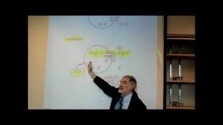 MEMBRANE POTENTIAL & THE ROLE OF POTASSIUM; PART 1 by Professor Fink