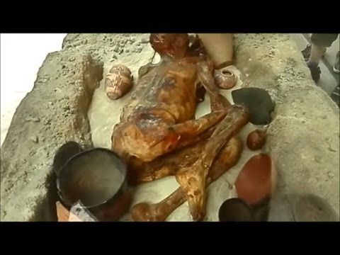 British Museum Egyptian Naturally Preserved Body England Kingdom tomb