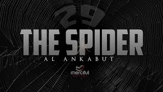 THE SPIDER (HEART TOUCHING QURAN)