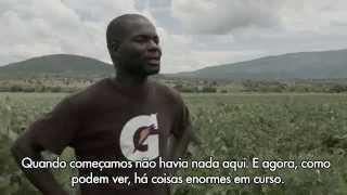 Todo Moçambique Projectos (Portuguese)