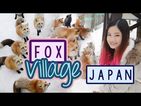 Japan Vlog: Zao Fox Village in JAPAN |  キツネ村
