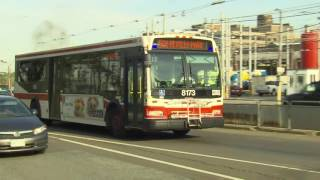 Streetcar versus bus debate returns to city council