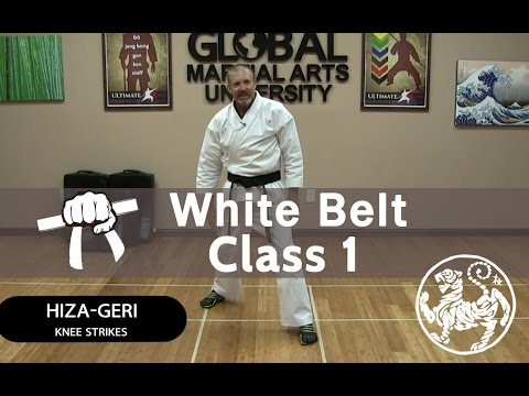 Shotokan Karate Follow Along Class - 9th Kyu White Belt - Class #1