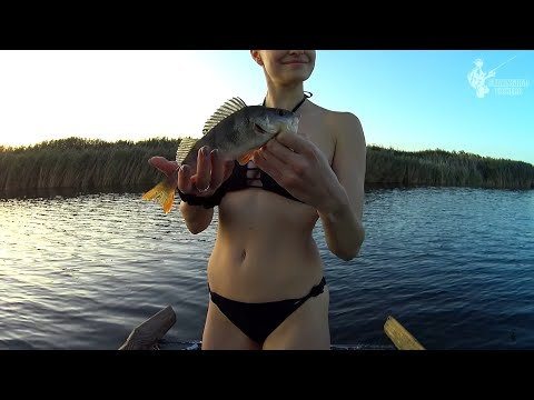 жена ловит рыбу видео