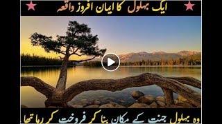 Behlol ki khani  (story of behlol) Jannat k mahel islamic bayan in urdu 2017 Muhammad Raza Saqi