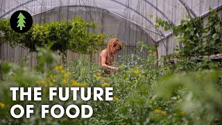 Organic Sustainable Farming is the Future of Agriculture - The Future of Food