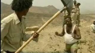 ERITREA: AMBELBLI TRAILER
