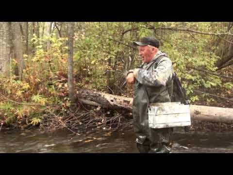 осенняя рыбалка на хариуса в малых реках иркутской области
