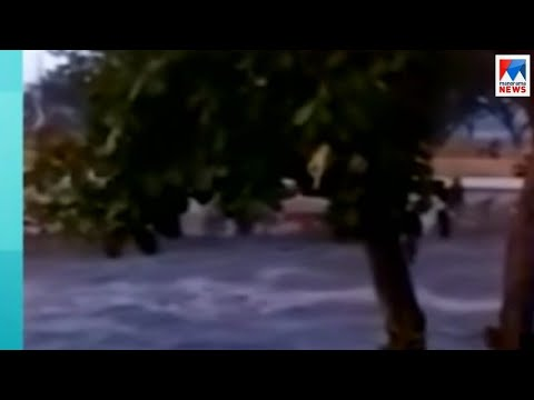 Xxx Mp4 ഇന്തൊനീഷ്യയില് സൂനാമിയില് 168 പേര് മരിച്ചു ഒട്ടേറെപ്പേരെ കാണാതായി Indonasia 3gp Sex