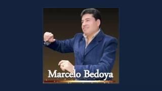Marcelo Bedoya - Corazón de Madera - Amor Acuático | Mosaico Bombas