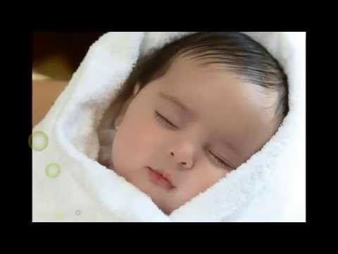 Download Good Night Videos WhatsApp Video, Best Wishes Video clips