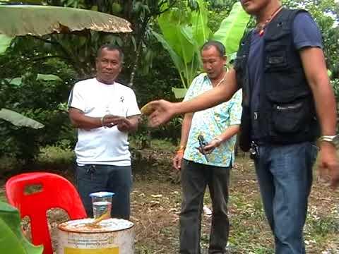 ลองของตะกรุด อาจารย์ตี๋เล็ก เขาสุนโมบูชาติดต่อ 085 0853553 ตรีเพชรไทยแลนด์