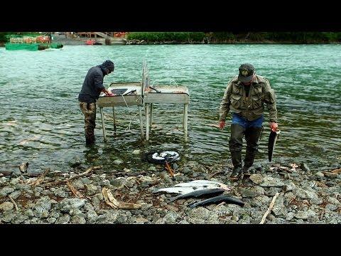 рыбалка на аляске фильм документальный фильм