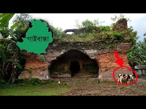 Xxx Mp4 ৬০ টি গাভি থেকে গাইবান্ধার নামকরন দেখুন এর ইতিহাস 3gp Sex