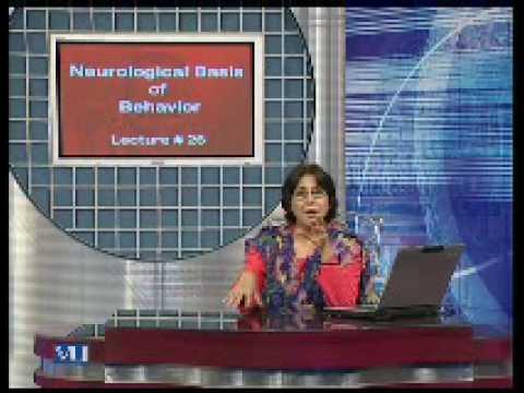 Thumbnail Lecture No. 26