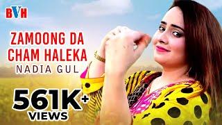 Nadia Gul Pashto New Song - Zamoong Da Cham Haleka