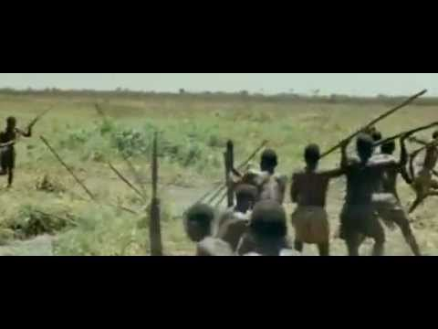 Xxx Mp4 African Hunting Elephants And Hippos 3gp Sex