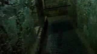 Messico 27: Palenque