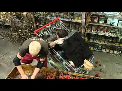 Xxx Mp4 I 39 M A Celebrity 2009 Bush Tucker Trial Gino And Justin Off Your Trolly 3gp Sex